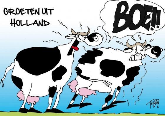 Cows comics