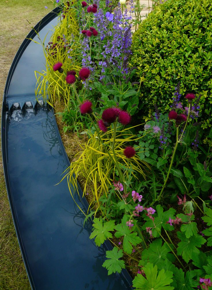 Designed by Carolyn Grohmann. Rill reflecting sky and planting.