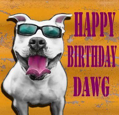pitbull happy birthday graphics | Pit bull pitbull Happy Birthday Dawg Greeting by ONEINTHREEWOMEN