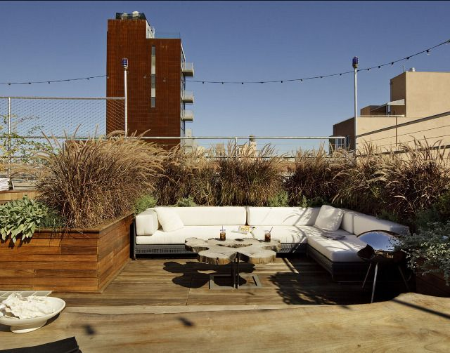 Orchard Street Roof Garden - Robert Young Architecture & Interiors