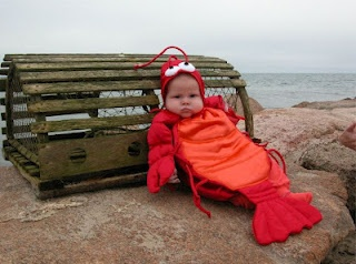 Halloween Costumes for Babies - Lobster on Cape Cod