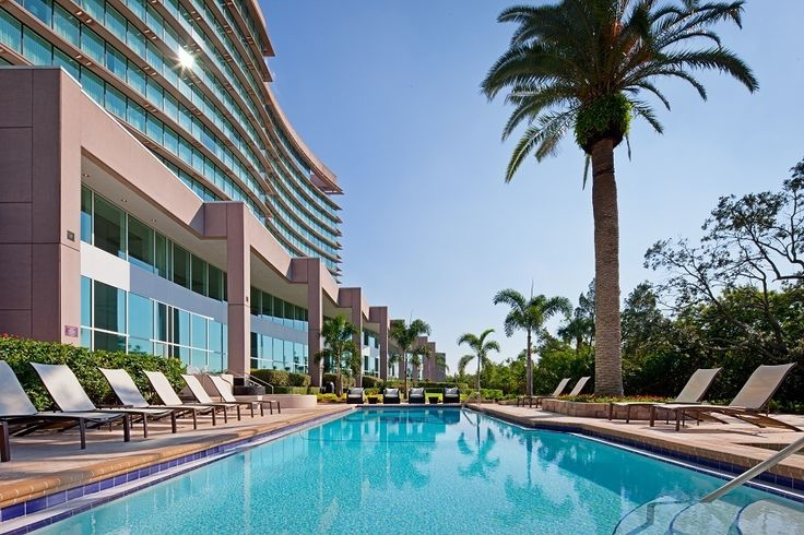 Enjoy a dream pool surrounded by a nature preserve at Grand Hyatt Tampa Bay.