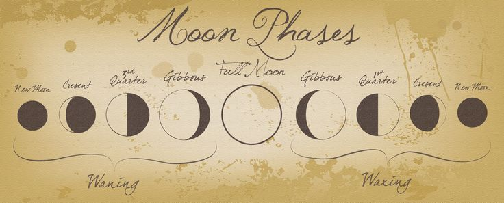 Moon Phases by Izzabell.deviantart.com