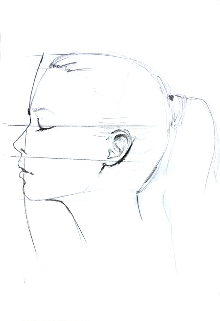 Line Drawing Face Profile : Profile drawing by elena ciuprina