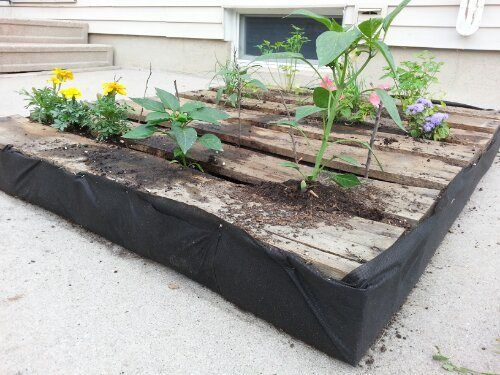 how to make a raised vegetable garden with pallets