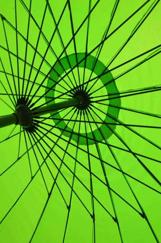 parasol detail