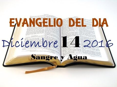 Evangelio del Dia- Miercoles 14 de Diciembre 2016- Sangre y Agua