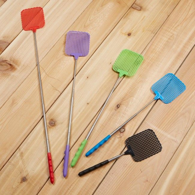 There ain't no flies on us - when we use a CTG Telescopic Fly Swatter!