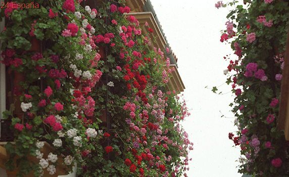 El Ayuntamiento quiere frenar el efecto invernadero premiando a los balcones más floridos de Madrid