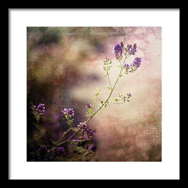 Purple Framed Print featuring the painting The Reach by Tonya Doughty