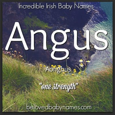 """Angus is a quintessential Irish/Scottish name. The roots of Angus are Irish but it's well used in Scotland as well. Being from right in the middle of """"cattle country"""", I question how usble Angus is here (being a type of beef). I think Angus would be a bold choice, but a very handsome one and Gus is a fun nickname. Angus is very important in Irish mythology."""