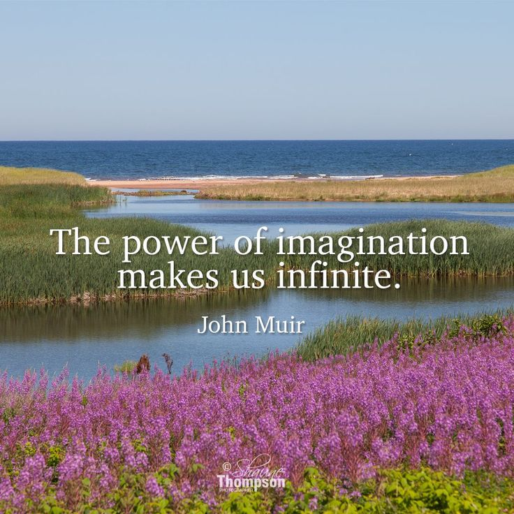 14 Best John Bratby Images On Pinterest: Best 25+ John Muir Quotes Ideas On Pinterest