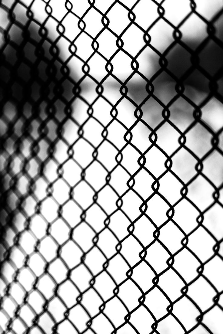 52 best other wire mesh images on Pinterest | Metal trellis, Wire ...