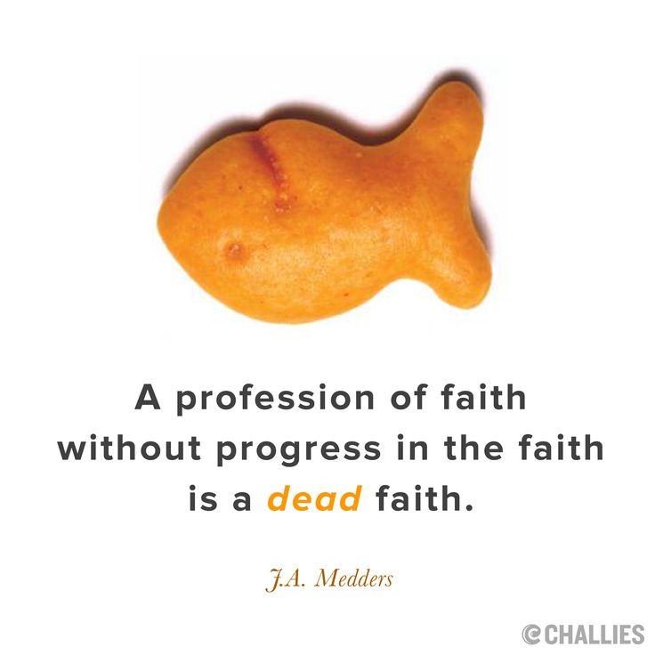 """""""A profession of faith without progress in the faith is a dead faith.""""  - J.A. Medders"""