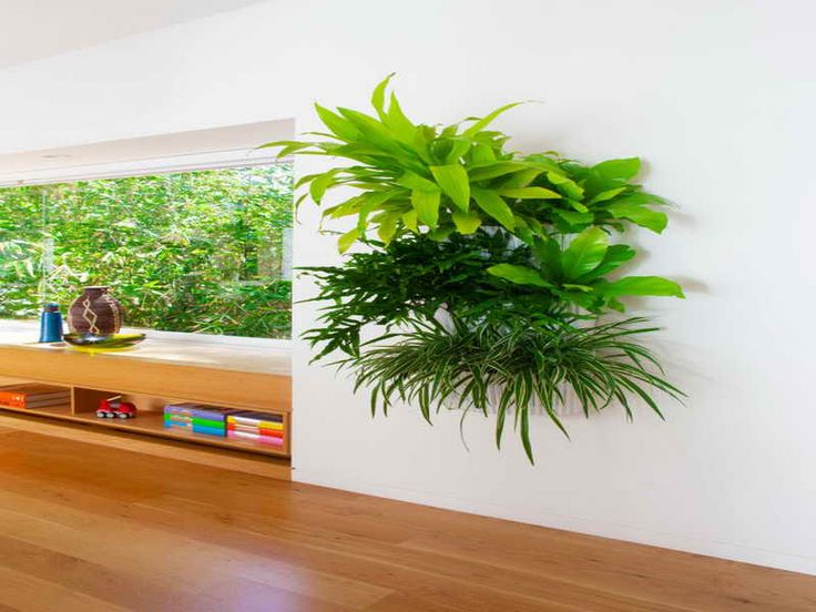 24 best images about indoor living wall planters ideas on pinterest diy wall green walls and - Indoor plant wall diy ...