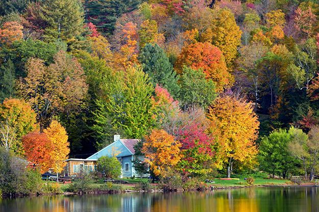13 Scenic Destinations For People Who Unapologetically Love Fall Fall Foliage Leaf Peeping Scenic Destinations