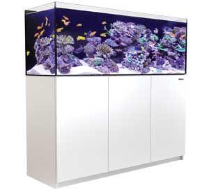 Die REEFER™ Systeme vereinen ein modernes, rahmenloses, Ultraklarglass Designaquarium mit einem eleganten Unterschrank und einem umfassenden Wassermanagementsystem. Bild: Red Sea