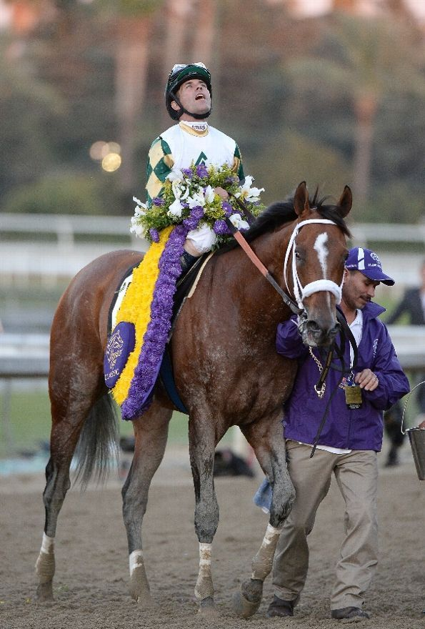 Mucho Macho Man and hall of famer Gary Stevens. 2013 Breeder's Cup Classic winning horse & jockey