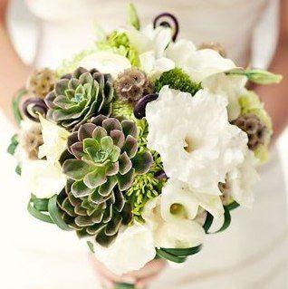 Sempervivum Wedding Flowers - how to prepare them for bouquets & boutonierres