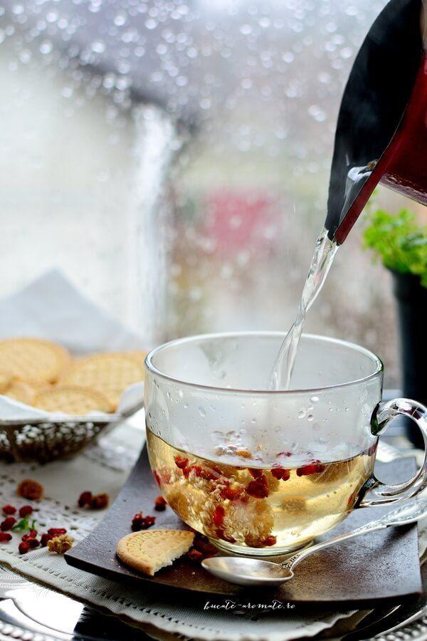 Ceai de mentă şi fructe uscate pentru zile ploioase