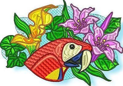 Aves-tropicales-10-disenos-de-bordado-de-la-maquina-CD-2-Tamanos-Incluido