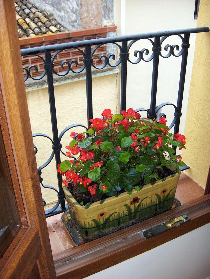 Ventana con flores, Ravalet 21
