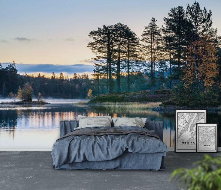 Tyst morgon i skogen Fototapet & Tapet Vatten