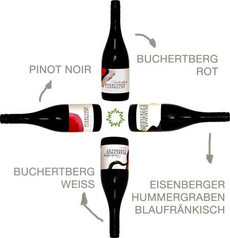 alle-Flaschen_Herbst-2012_webseite_gedreht