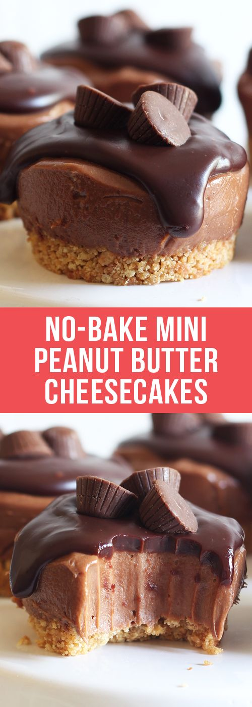 No Bake Mini Peanut Butter Cheesecakes have a graham cracker crust, creamy chocolate peanut butter cheesecake filling, and are topped with chocolate ganache and mini peanut butter cups. No oven needed! #peanutbutter #cheesecake #Minicheesecake #dessert #recipe #dessertrecipes #chocolate