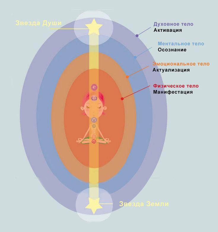 Строение тела человека. 2 новые чакры баланса и равновесия: Звезда Души и Звезда Земли