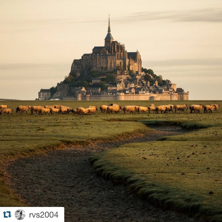 "Your World Gallery on Instagram: ""#yourworldgallery #Repost @rvs2004 with @repostapp. ・・・ Мон-Сен-Мишель, #Normandy, #France. May 2015 - Le Mont Saint-Michael, #Нормандия, #Франция. Май 2015"""