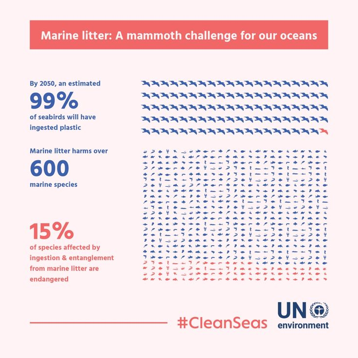 UN Environment launches major global #CleanSeas campaign to end marine litter Ten countries are already on board, as well as DELL Computers, singer Jack Johnson, actor Adrian Grenier and media personality Nadya Hutagalung More than 8 million tonnes of plastic leaks into the ocean each year – equal to dumping a garbage truck of plastic every minute