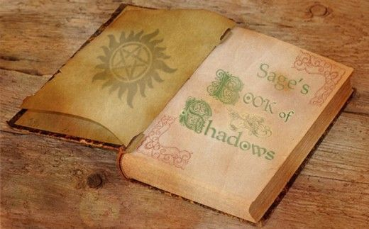 Thinking about starting your own Book of Shadows? That's great! But you might be wondering exactly what you should start with. Here are some ideas of what to put (and what not to put) in your BOS.