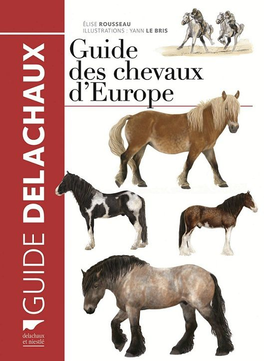 Guide Des Chevaux D Europe Une Encyclopedie De Terrain Biodiversite Faune Conservation Cheval Faune Europe