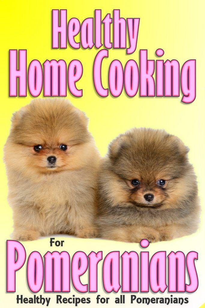 Pomeranian Food Recipes Pomeranian Puppy Make Dog Food Dog Care