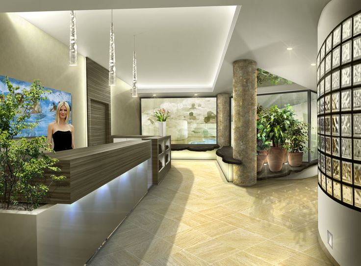 Entrance spa - Contemporary style - render - Internal decorations