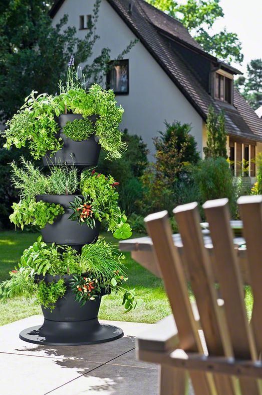 Yrttitornissa voi kasvattaa mansikoita, kirsikkatomaatteja, salaattia.... Ammattikäyttöön suunniteltu tukeva torni, joka vastaa viiden neliön kasvimaata (42 tainta). Kunnon altakastelujärjestelmä: ilmanvaihto, vesimittari ja kolme 8 litran vesisäiliötä - yksi kussakin kerroksessa!