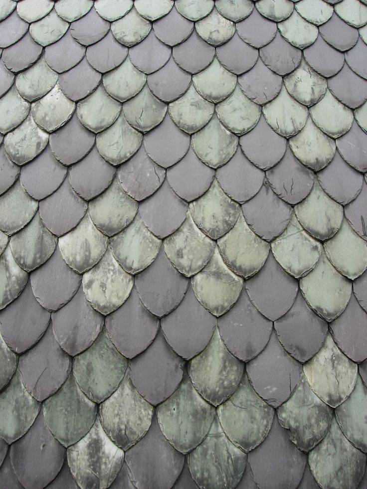 Roof Tiles North Wales - gray