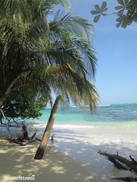 Isla Bastimentos National Marine Park, Panama
