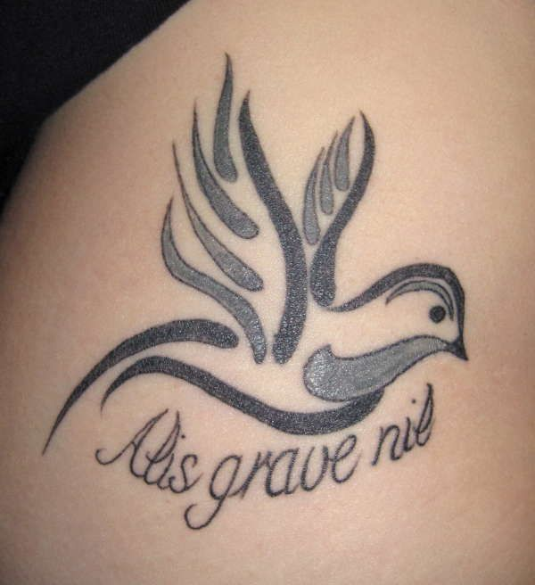 """@Amy Lyons Hicks Latin phrase """"Alis Grave Nil"""" ....meaning """"Nothing is to heavy for those who have wings"""""""
