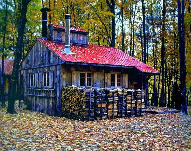 Trouvailles Pinterest: Allons à la cabane!