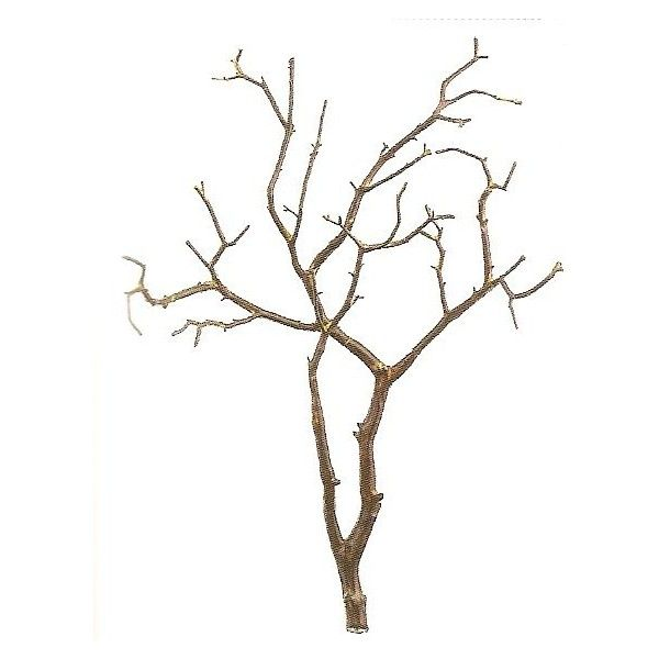Artificial Trees Artificial Plants and Trees Palm Trees - Plastic Twig... (€73) ❤ liked on Polyvore featuring home, home decor, floral decor, tree, flowers, backgrounds, branches, fillers, artificial trees and palm trees