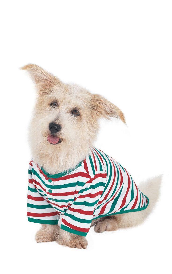 Holiday stripe matching family pajamas pajamagram dog