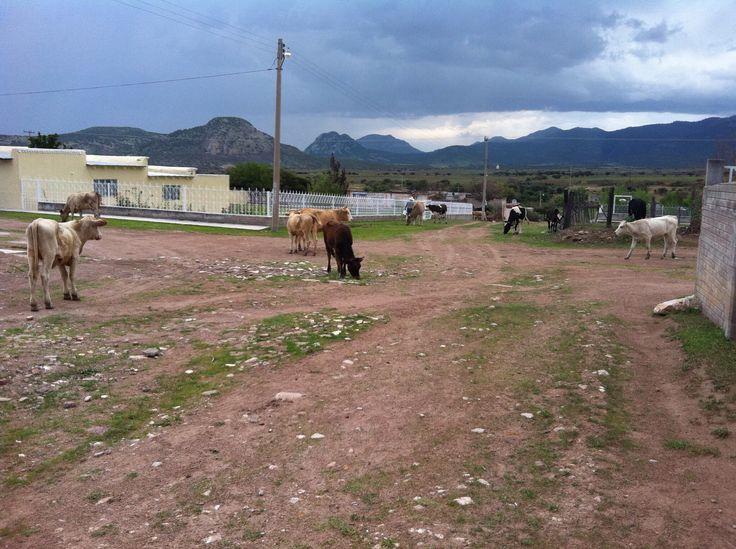 El Jaguey, Durango, Mexico