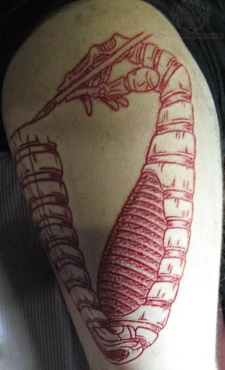 114 best scarification images on pinterest. Black Bedroom Furniture Sets. Home Design Ideas