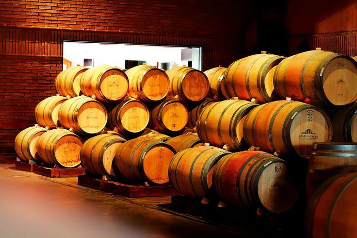 Chilean Wine Barrels by Felipe Contreras on 500px