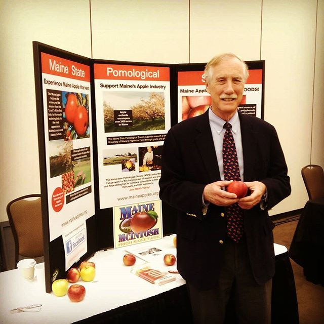 US Senator King at the Maine Pomological booth #maineapples #maineapplepicking…