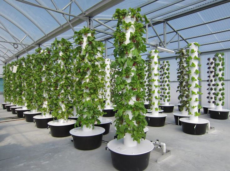 751 Best Tower Gardens By Juice Plus Images On Pinterest Aquaponics Tower Garden And