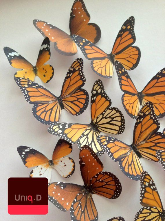 Monarch Butterfly 3d Wall Decoration Decorative Butterflies