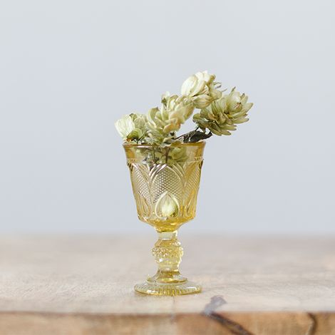 amber-sherry-glass